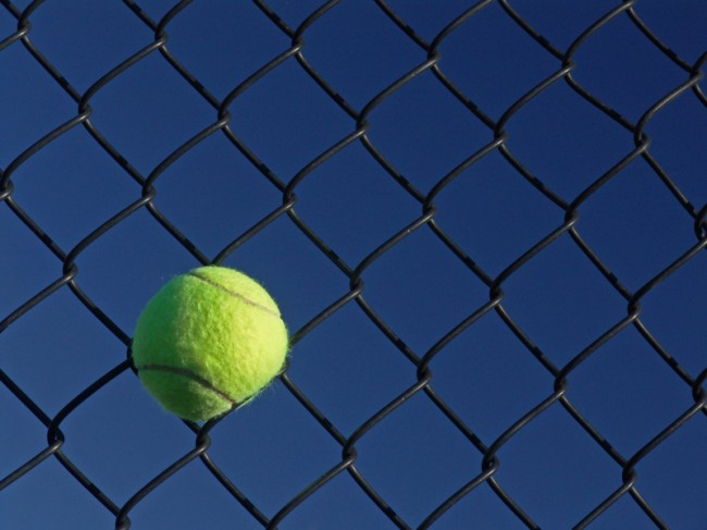 If a ball sticks in the fence before it bounces, it's out.